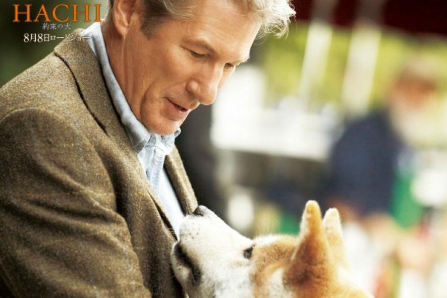 Watch Hachi A Dog S Tale Online Free